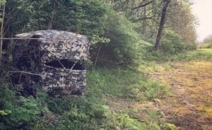 Things To Consider When Choosing Your Ground Hunting Blinds